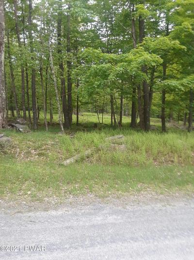 128 MOUNTAIN DR, Greentown, PA 18426 - Photo 1