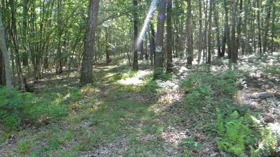 LOT 2 EAST BEAVER DAM ROAD, Tafton, PA 18464 - Photo 2