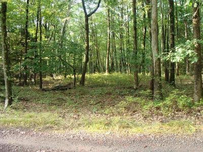 PERRY RD, Greentown, PA 18426 - Photo 1