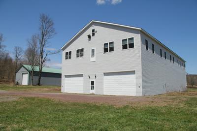 695 PINE MILL RD, Equinunk, PA 18417 - Photo 2