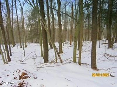 LOT 3006 BUCK HILL RD, Greentown, PA 18426 - Photo 2