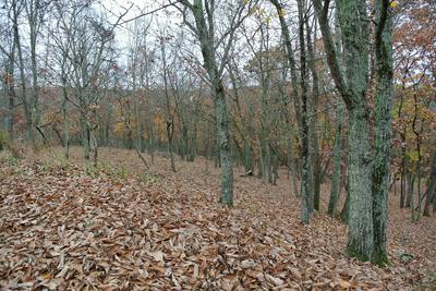 S HILLSBROW CT, Bushkill, PA 18324 - Photo 1
