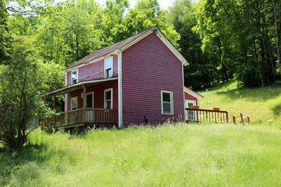 179 LAYTON RD, Equinunk, PA 18417 - Photo 1