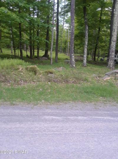 128 MOUNTAIN DR, Greentown, PA 18426 - Photo 2