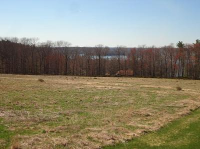 21 CALICO POINT DRIVE, Paupack, PA 18451 - Photo 1