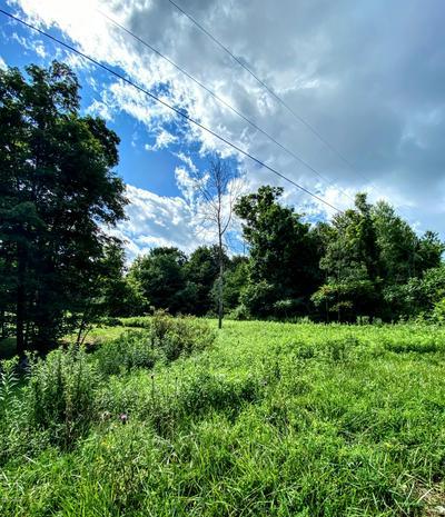 LOT 3 ST MARYS VILLA RD, Roaring Brook Township, PA 18444 - Photo 1
