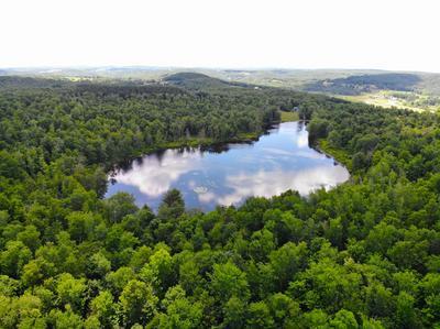 147 SKY LAKE RD, Tyler Hill, PA 18469 - Photo 2