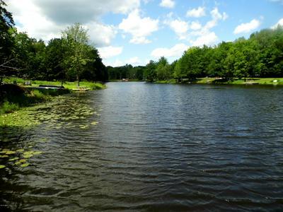 207 DEERFIELD RD, Lake Ariel, PA 18436 - Photo 2
