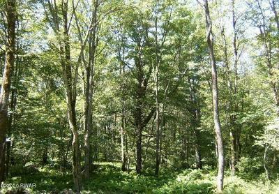 SQUIRREL TAIL CT, Bushkill, PA 18324 - Photo 1