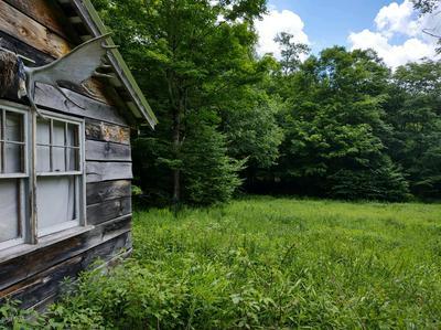 NEWMAN RD, Hancock, NY 13783 - Photo 2