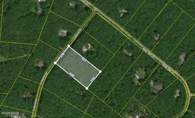 S WYND DR, Lakeville, PA 18438 - Photo 1