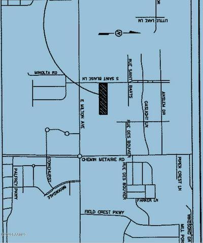 721 S SAINT BLAISE LN, Youngsville, LA 70592 - Photo 2