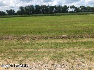 LOT 42 TOM SCHEXNAYDER ROAD, Opelousas, LA 70570 - Photo 1
