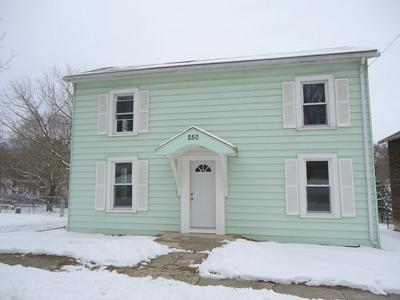 250 MILLS ST, Cedarville, IL 61013 - Photo 2