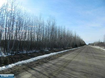 TBD COUNTY ROAD 14, Littlefork, MN 56653 - Photo 2