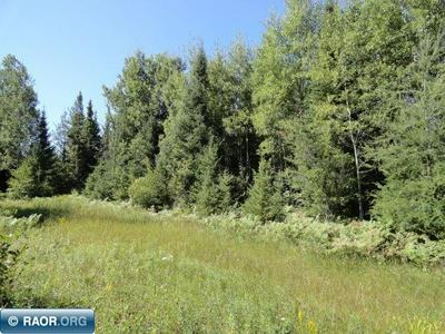 TBD EAST CENTRAL LAKES ROAD, Eveleth, MN 55734 - Photo 1