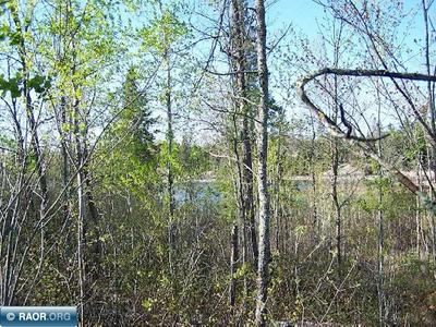 XXXX TIMBERWOLF TRAIL, Kabetogama, MN 56669 - Photo 2