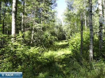 TBD EAST CENTRAL LAKES ROAD, Eveleth, MN 55734 - Photo 2