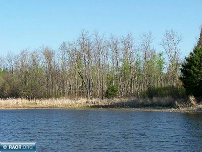 XXXX TIMBERWOLF TRAIL, Kabetogama, MN 56669 - Photo 1