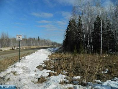 TBD COUNTY ROAD 14, Littlefork, MN 56653 - Photo 1