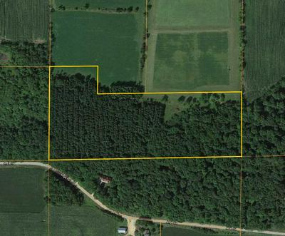 ANGLE ROAD, MARION, WI 54950 - Photo 1