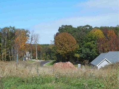 863 BLACK GRANITE CT, DENMARK, WI 54208 - Photo 2