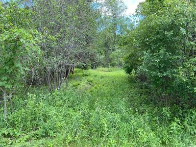 HWY EE, REDGRANITE, WI 54970 - Photo 2