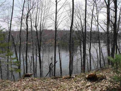 WINSLOW LAKE LANE, MOUNTAIN, WI 54149 - Photo 2