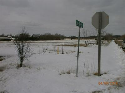 N6317 LAKE BREEZE LN, SCANDINAVIA, WI 54977 - Photo 2
