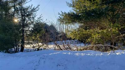 LOWER DAM ROAD, MOUNTAIN, WI 54149 - Photo 2