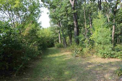 HWY FF, COLOMA, WI 54930 - Photo 2