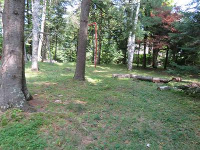 16920 DEER TRACK LN, TOWNSEND, WI 54175 - Photo 2