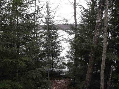 MARY LAKE LANE, WHITE LAKE, WI 54491 - Photo 1