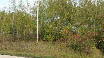 RICHARDS ROAD, Porterfield, WI 54159 - Photo 2
