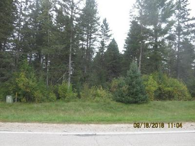HWY W, MOUNTAIN, WI 54149 - Photo 1
