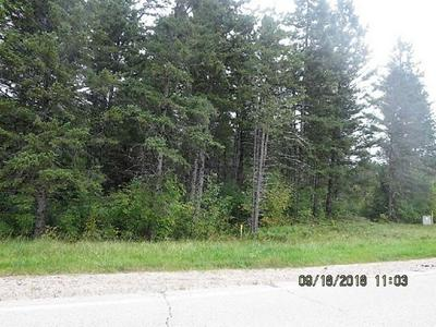HWY W, MOUNTAIN, WI 54149 - Photo 2