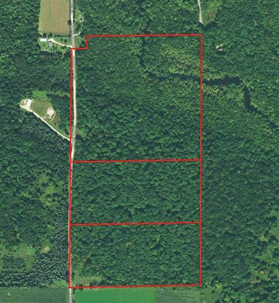 WEASEL DAM ROAD, TIGERTON, WI 54486 - Photo 1
