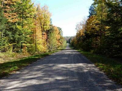 POACHERS RUN ROAD, Athelstane, WI 54104 - Photo 2