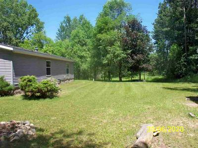 10648 PINE WOODS RD, COLEMAN, WI 54112 - Photo 2