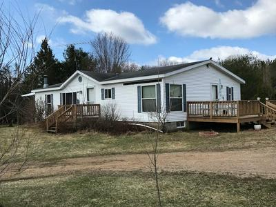 14653 SECTION 4 LN, Mountain, WI 54149 - Photo 1
