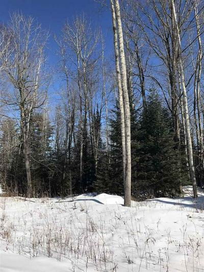 BEAR LAKE ROAD, Wabeno, WI 54566 - Photo 2