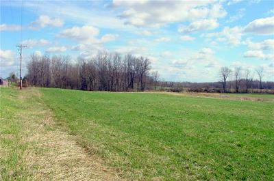 10 ACRES ON CTY. RD. G, Conrath, WI 54731 - Photo 2