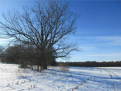 1121 6 1/2 AVE, HILLSDALE, WI 54733 - Photo 2