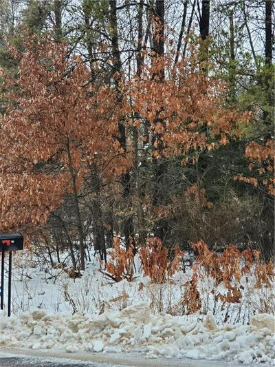 LOT 3 PINEWOOD AVENUE, Chetek, WI 54728 - Photo 1