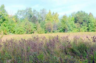 40 ACRES ON HWY. 8, Kennan, WI 54537 - Photo 1