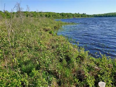 XXX (LOT 2) BLUE GILL BAY ROAD, Cable, WI 54821 - Photo 1
