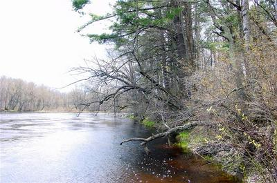15 ACRES ON CTY. RD. A, Bruce, WI 54819 - Photo 2