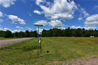 0 RIVER PINES DRIVE, Bruce, WI 54819 - Photo 2