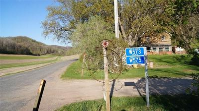 W575 HOGAN RD, Arcadia, WI 54612 - Photo 2