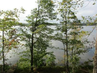 00 SOUTH SHORE ROAD, Bruce, WI 54819 - Photo 1